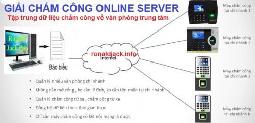 Máy chấm công vân tay giá rẻ online server